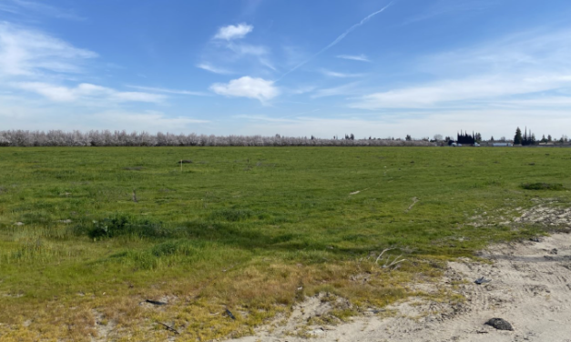 New livestock lab<br>in the works for Turlock