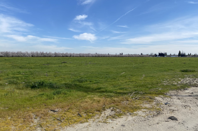 New livestock lab<br>in the works for Turlock:<br> <span style='font-weight:200; color:#a1a1a1; font-size:80%;'>$88.6 million project included in Governor's budget proposal</span>