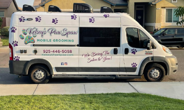 Paw Spaw: A mobile paradise for pets